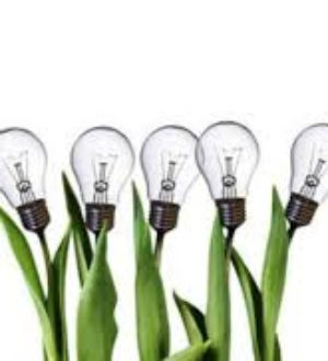 Innoveren is best lastig: 5 oorzaken